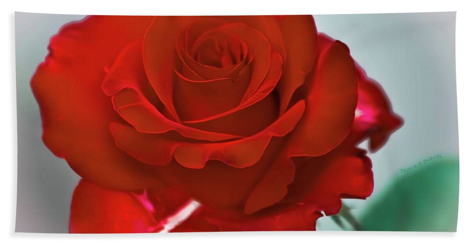 Rose Beach Towel featuring the photograph Simply Red by DigiArt Diaries by Vicky B Fuller