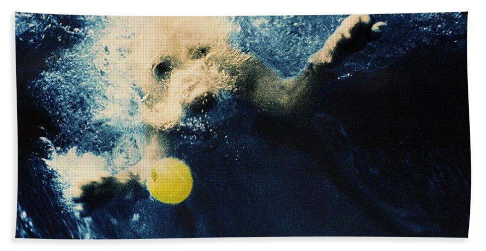 Dog Beach Towel featuring the photograph Splashdown by Jill Reger