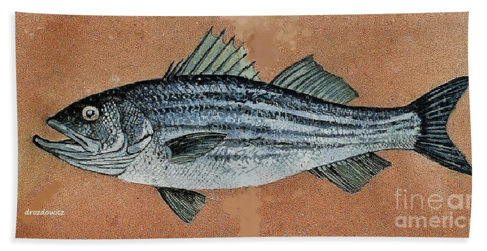Fish Striped Bas Beach Towel featuring the painting Striper by Andrew Drozdowicz