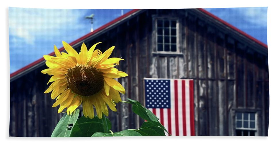 Sunflower Beach Towel featuring the photograph Sunflower By Barn by Sally Weigand