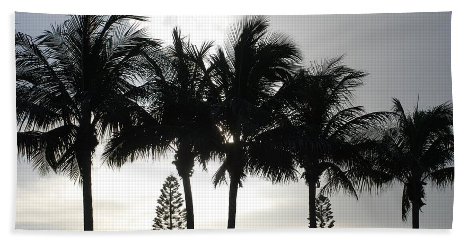 Sky Beach Towel featuring the photograph Sunset Thru The Trees by Rob Hans