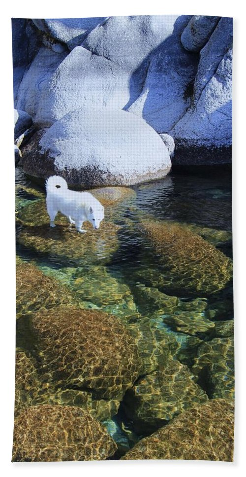 Waterscape Beach Towel featuring the photograph Tahoe Wild by Sean Sarsfield
