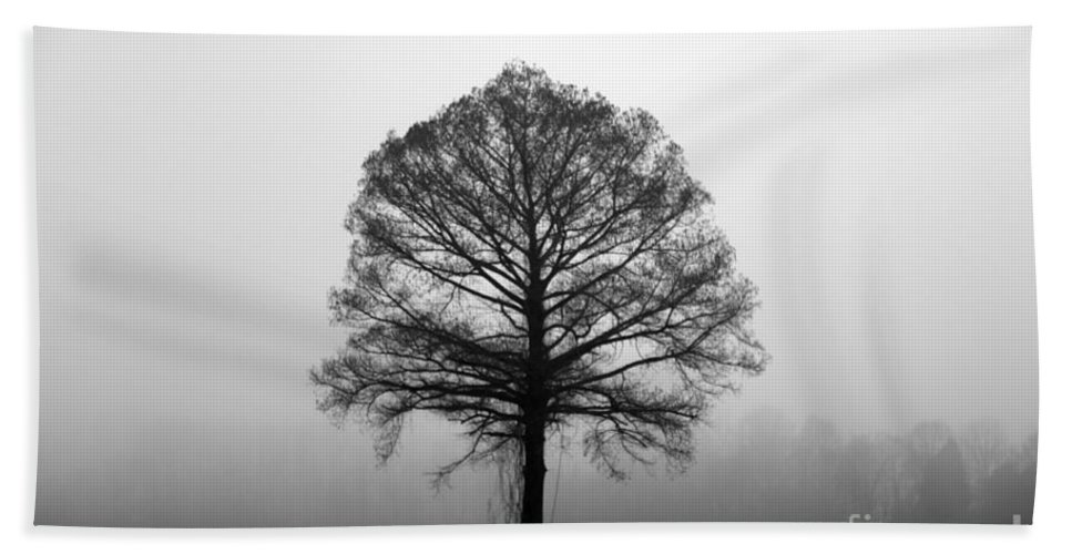 Tree Beach Towel featuring the photograph The Tree by Amanda Barcon