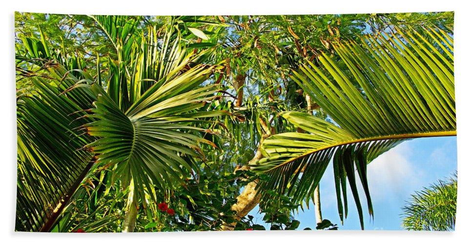 Tropical Beach Towel featuring the photograph Tropical Plants by Zal Latzkovich