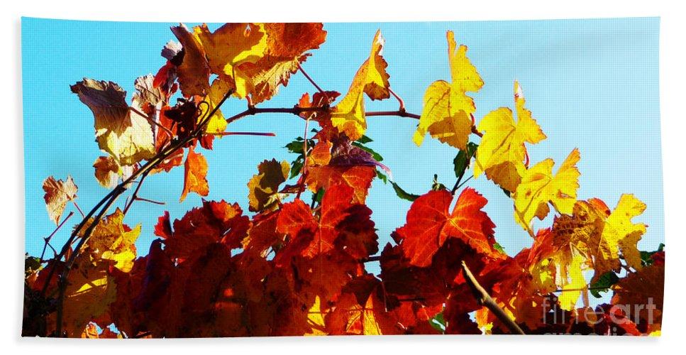 Grape Vineyard Beach Towel featuring the photograph Vineyard 12 by Xueling Zou