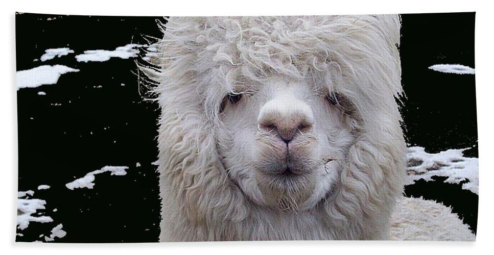Alpaca Beach Towel featuring the digital art Wild Life by Robert Orinski