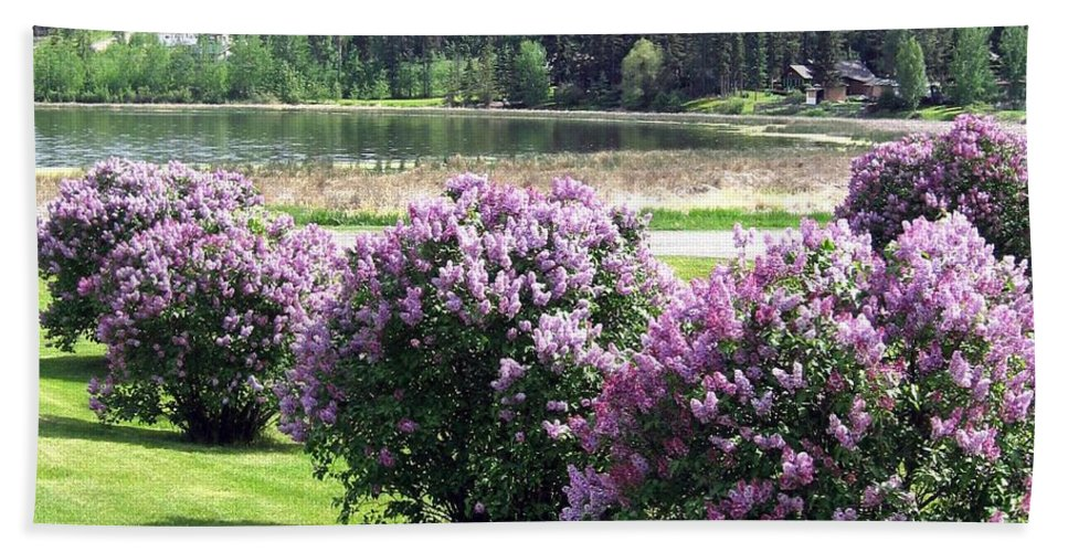 103 Mile Lake Beach Towel featuring the photograph 103 Mile Lake Lilacs by Will Borden