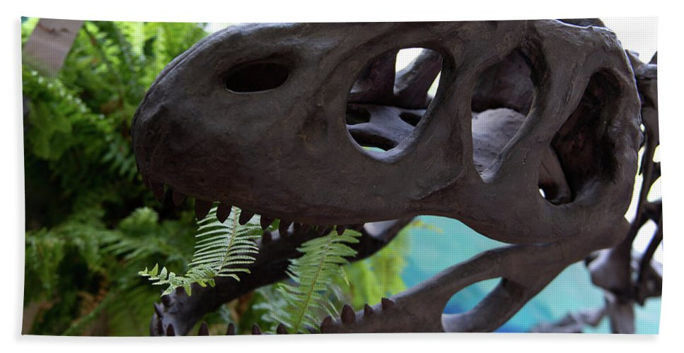 Centro De Investigaciones Paleontologicas Beach Towel featuring the digital art Centro De Investigaciones Paleontologicas by Carol Ailles