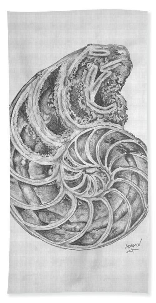 Shells Beach Towel featuring the drawing Untitled by Adam Vance