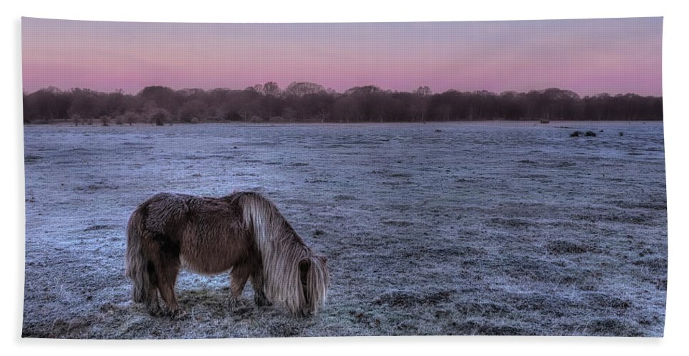 Balmer Lawn Beach Sheet featuring the photograph New Forest - England by Joana Kruse