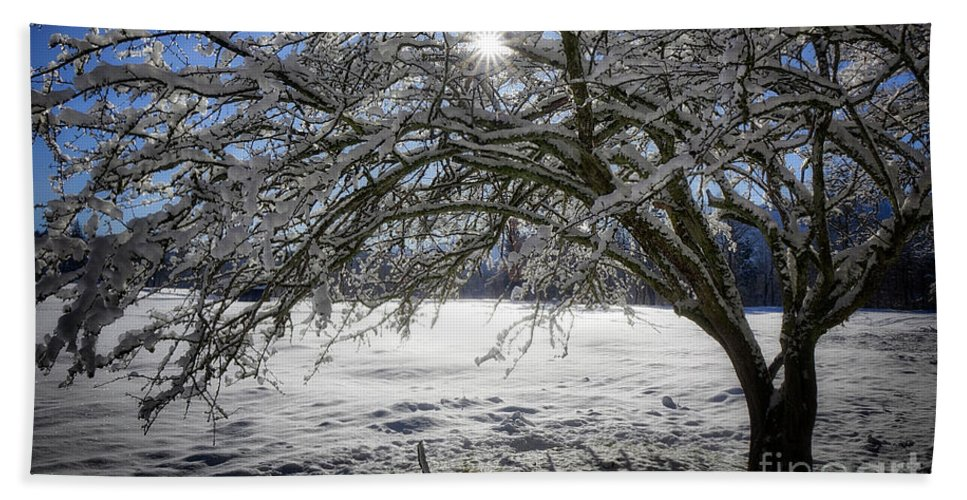 Nag004765 Beach Towel featuring the photograph A Winter's Tale by Edmund Nagele