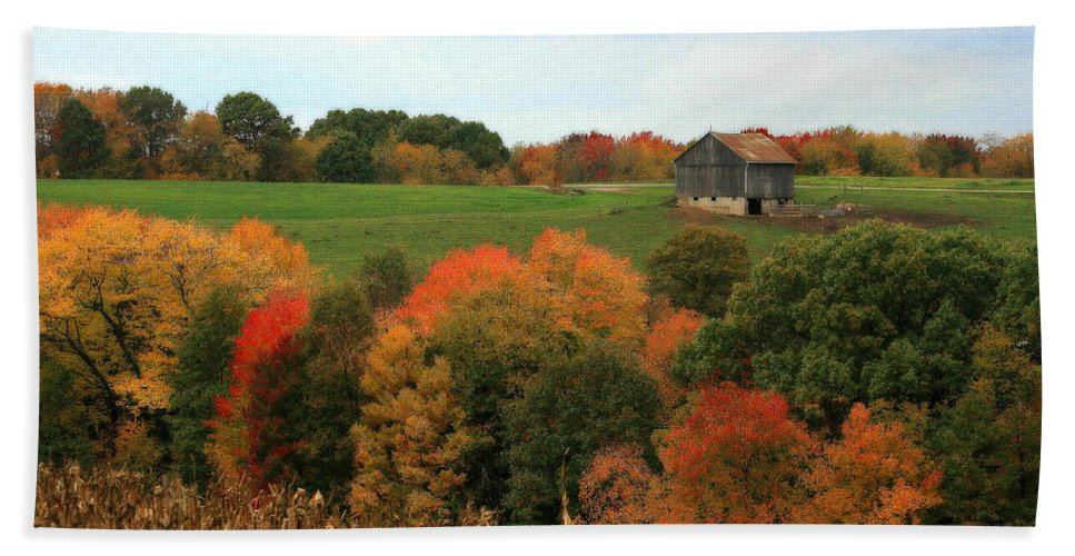 Affordable Beach Towel featuring the photograph Barn On Autumn Hillside A Seasonal Perspective Of A Quiet Farm Scene by Angela Rath