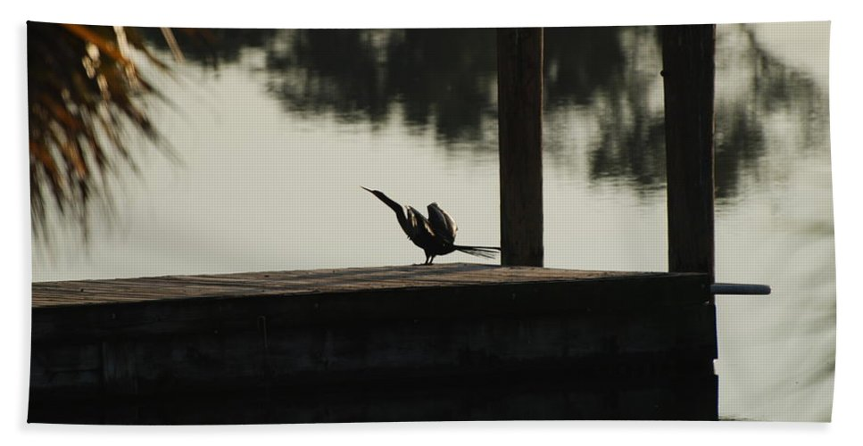 Reflections Beach Towel featuring the photograph Dock Bird by Rob Hans