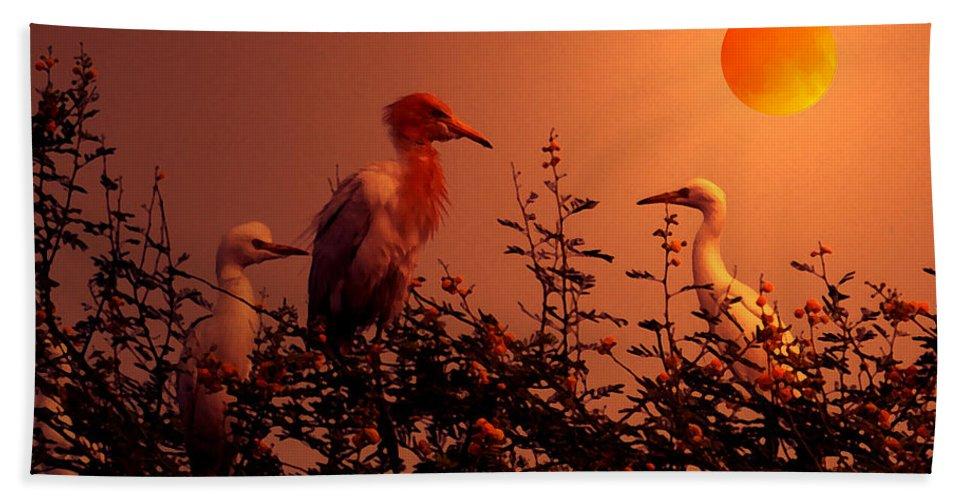 Good Beach Towel featuring the digital art Good Night by Bliss Of Art