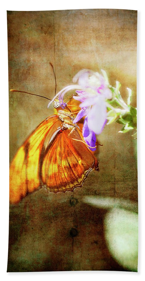 Butterfly Beach Towel featuring the photograph Julia Butterfly by Saija Lehtonen