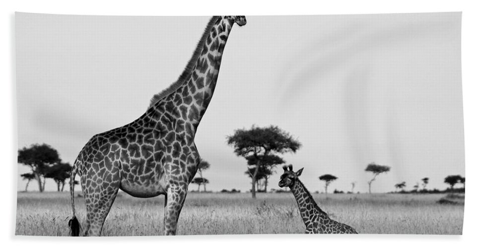 Africa Beach Towel featuring the photograph Meet My Little One by Michele Burgess
