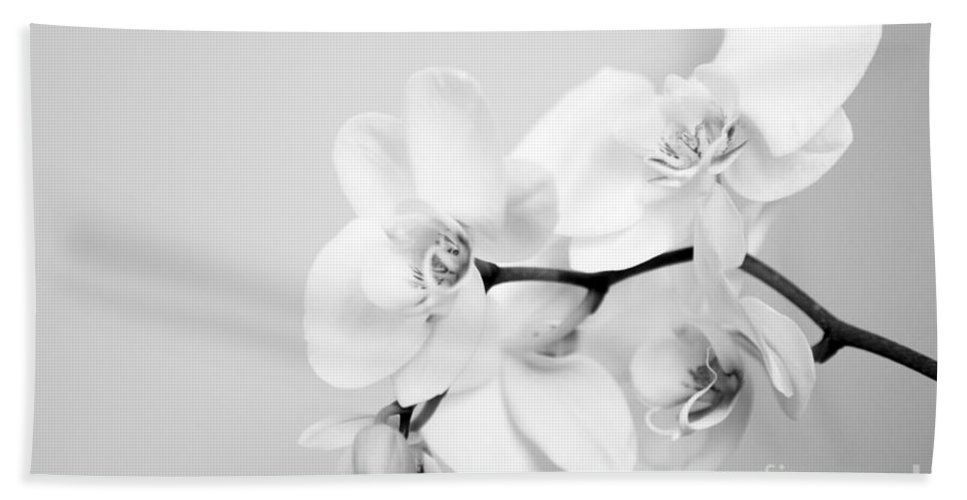 Orchid Beach Towel featuring the photograph Orchid by Amanda Barcon