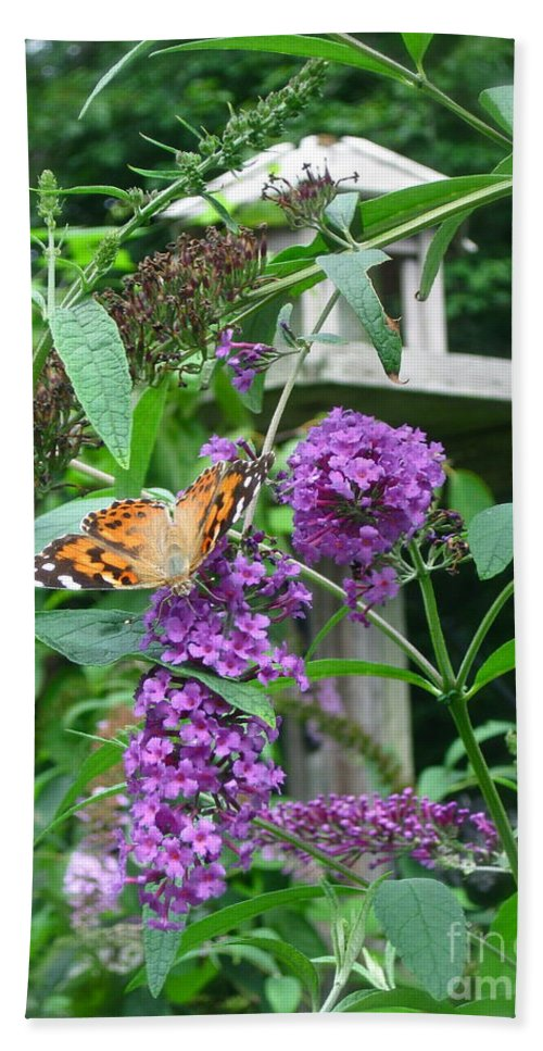 Painted Lady Butterfly Beach Towel featuring the photograph Painted Lady Butterfly by Nancy Patterson