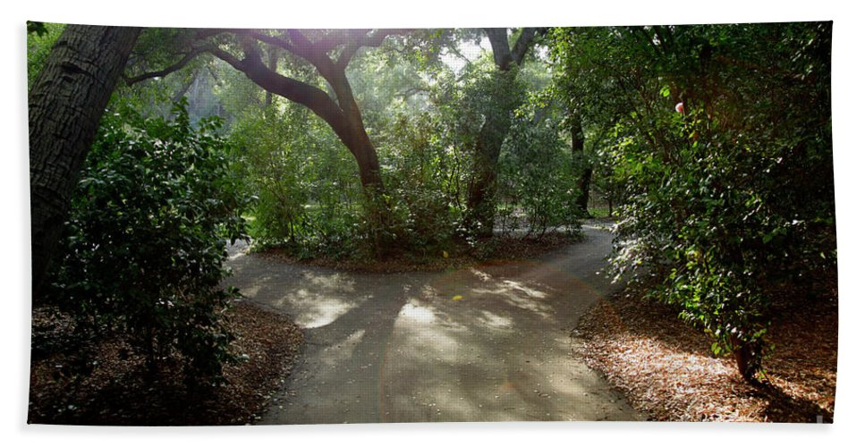 Nature Beach Towel featuring the photograph 2 Paths by Dean Triolo