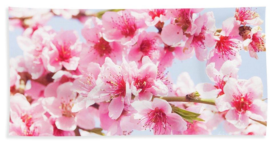 Peach Beach Towel featuring the photograph Peach Flowers by Irina Afonskaya