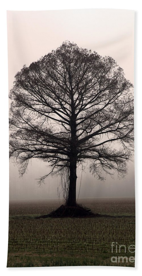 Trees Beach Sheet featuring the photograph The Tree by Amanda Barcon