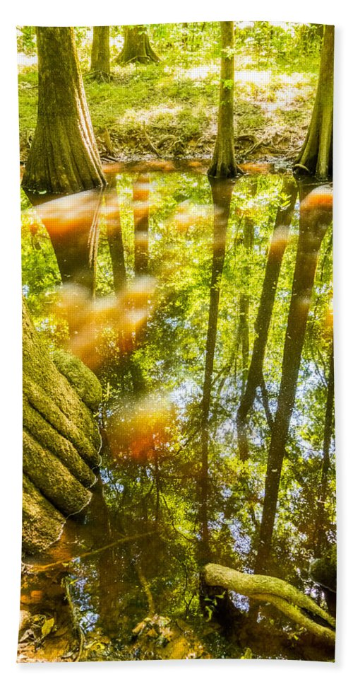 Broken Beach Towel featuring the photograph cypress forest and swamp of Congaree National Park in South Caro by Alex Grichenko