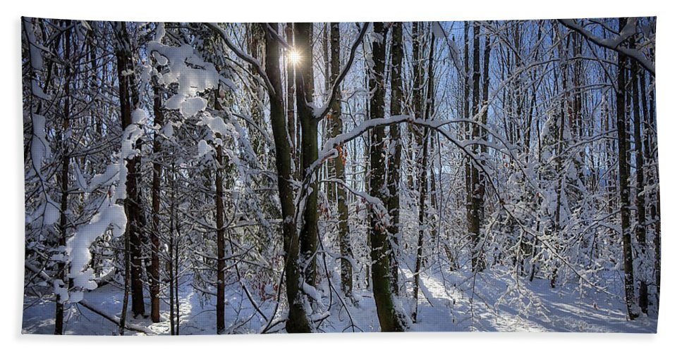 Nag004764 Horizontal Winter Snow Covered Trees Tranquil Peaceful Wintry Scene Setting Scenery Scenic Wood Woods Woodland Woodlands Against Sun Sunshine Sunlight Near Bad Tolz Bad Toelz Bad Tölz Bavaria Germany Bavarian German Suitable For Designed For Christmas Card Xmas Card Card Greeting Card Seasons Greetings Design Display Print Decor Wallart Image Edmund Nagele Naegele Nagelestock Sonrx Hdr Photography Photographic Art Picture Picturesque Winter Wonderland December Beach Towel featuring the photograph A Winter's Tale by Edmund Nagele