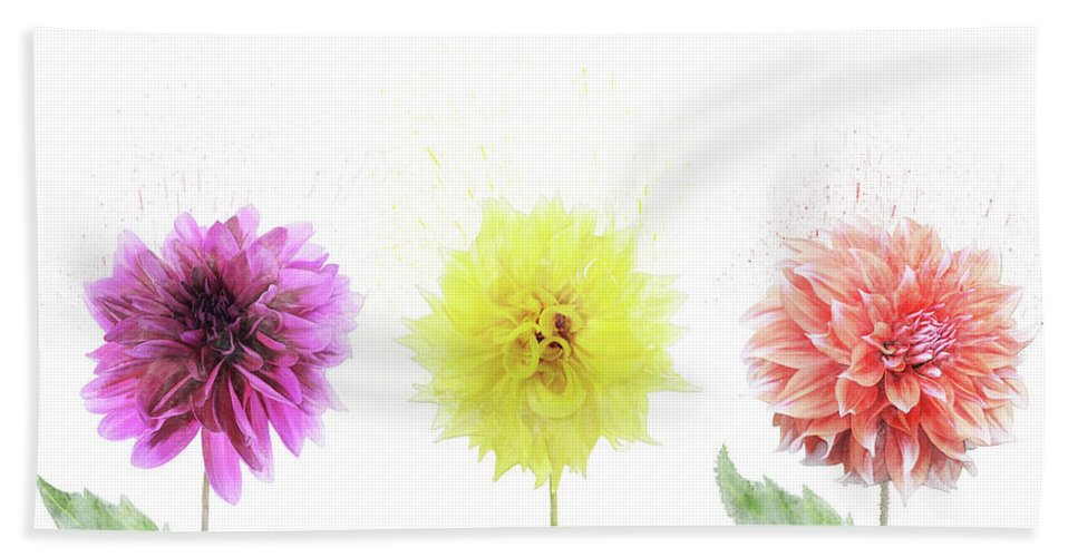 Dahlia Beach Towel featuring the digital art Dahlia Flowers by Svetlana Foote