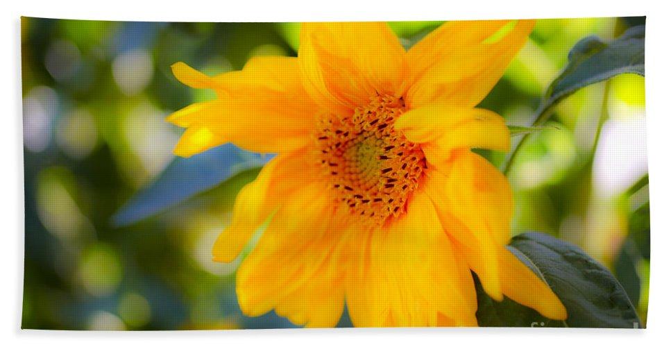 Yellow Beach Towel featuring the photograph Flowering Garden. by Gal Eitan