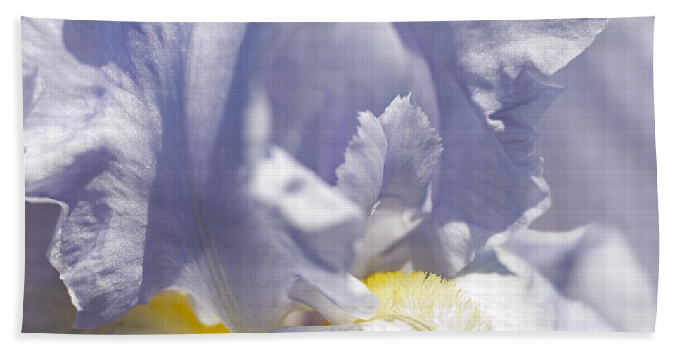Genus Iris Beach Towel featuring the photograph Iris Flowers by Tony Cordoza