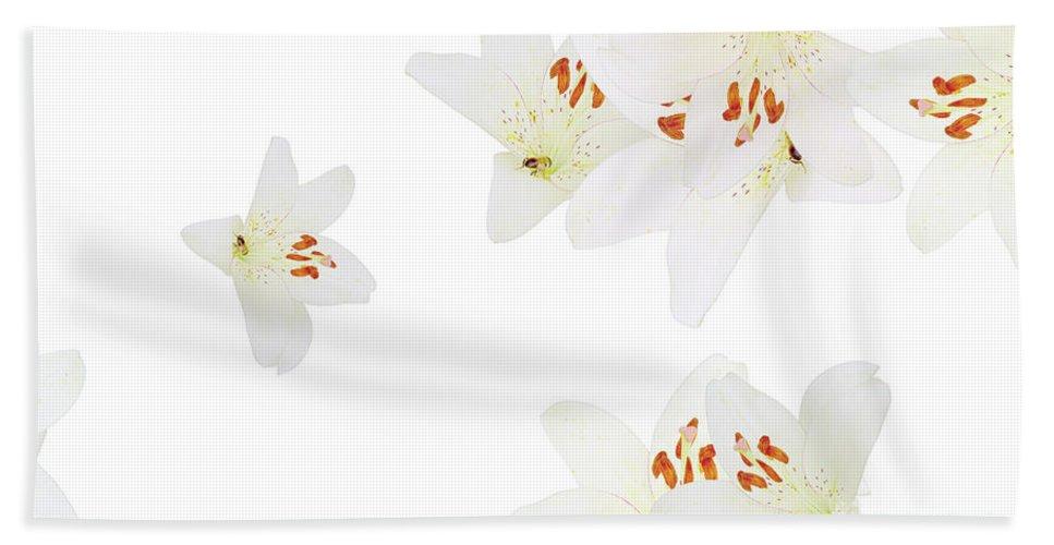 Flowers Beach Towel featuring the photograph Nice Patterns by Elvira Ladocki
