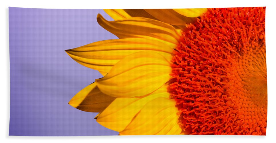Sunflowers Beach Towel featuring the photograph Sunflowers by Mark Ashkenazi