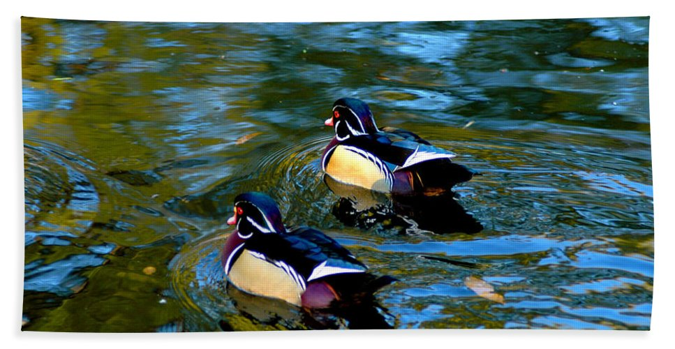 Clay Beach Sheet featuring the photograph Wood Duck by Clayton Bruster