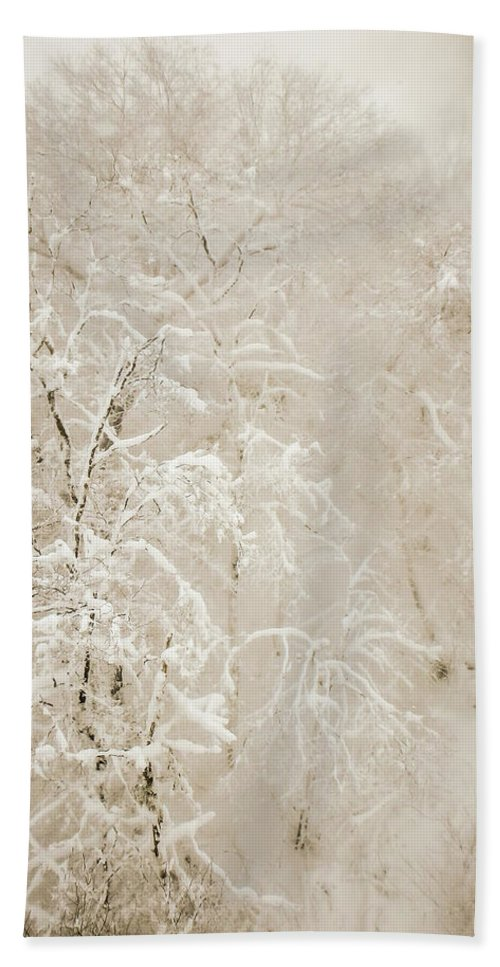 Abstract Beach Towel featuring the photograph Abstract Scenes At Ski Resort During Snow Storm by Alex Grichenko