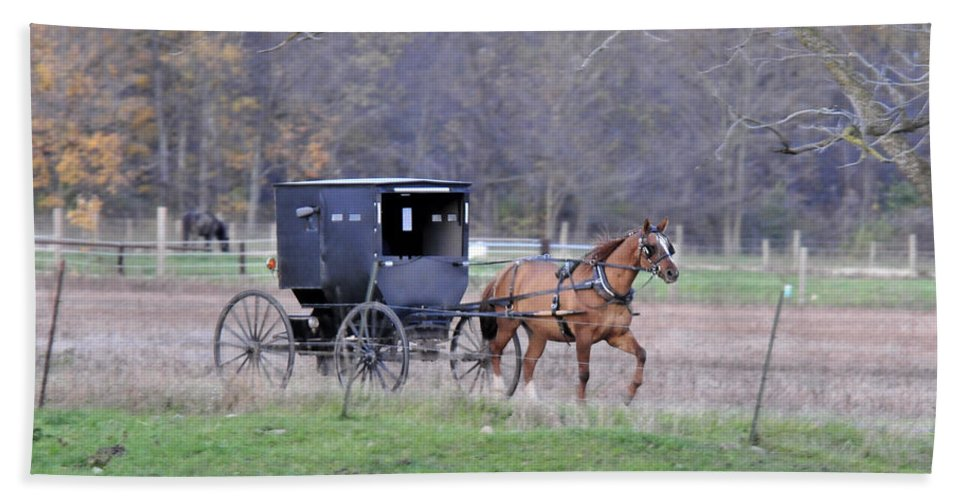 Amish Buggy Beach Towel featuring the photograph Amish Buggy by David Arment