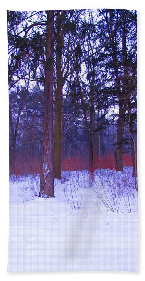 Colour Beach Towel featuring the photograph Forest by Wojtek Kowalski