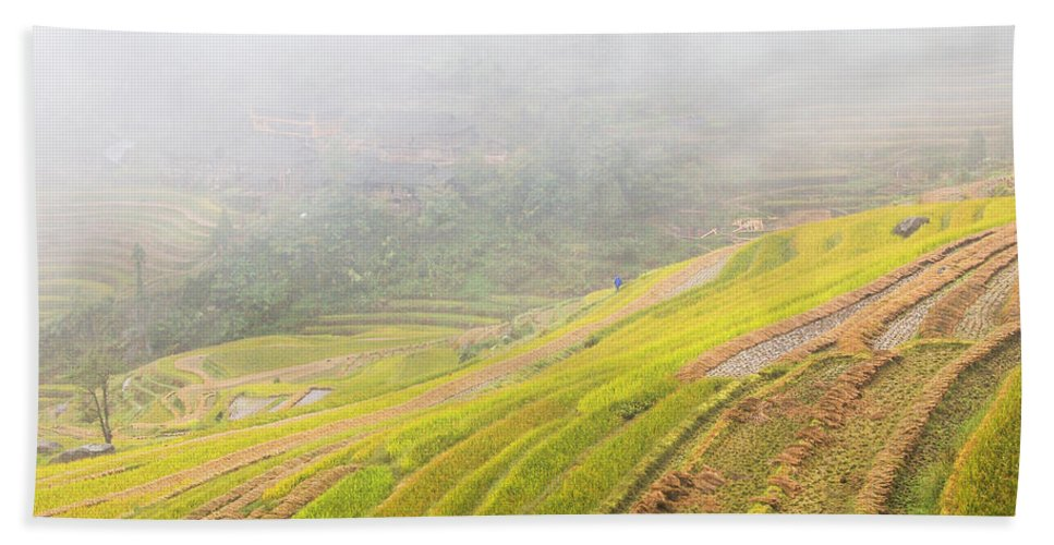 Terrace Beach Towel featuring the photograph Terrace Fields Scenery In Autumn by Carl Ning
