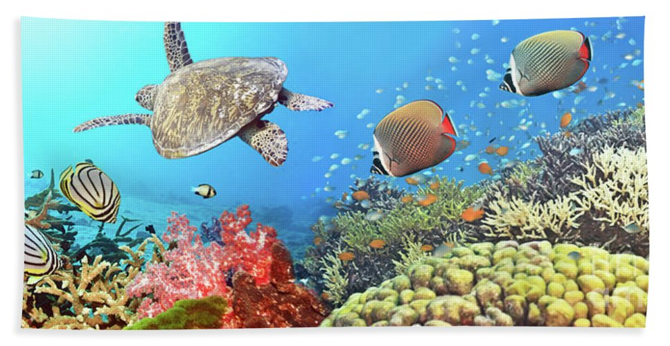 Butterflyfish Beach Towel featuring the photograph Underwater Panorama by MotHaiBaPhoto Prints