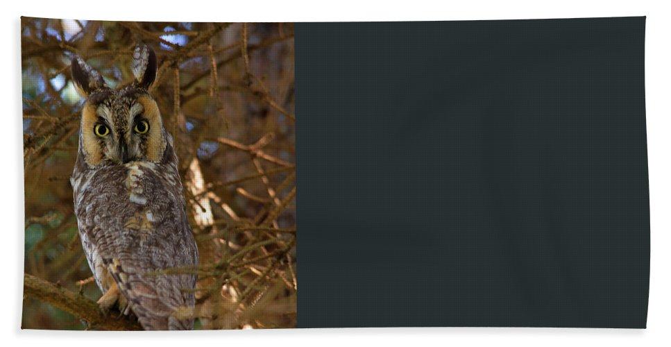 Tahquamenon Falls Beach Towel featuring the photograph Close Up by Linda Kerkau