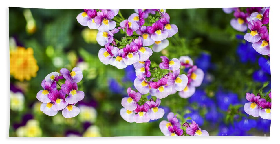 Red Beach Towel featuring the photograph Flowering Garden. by Gal Eitan