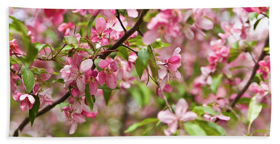 Pink Beach Towel featuring the photograph Pink Cherry Tree by Irina Afonskaya