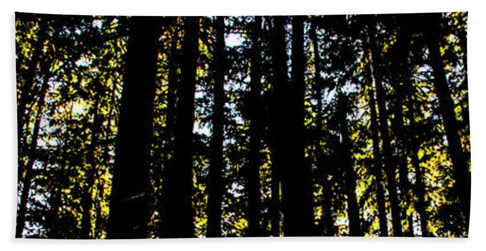Beach Towel featuring the photograph Salt Creek Falls by Angus Hooper Iii