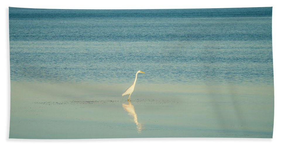Tranquil Beach Towel featuring the photograph Tranquil Nature In Florida Keys by Alex Grichenko