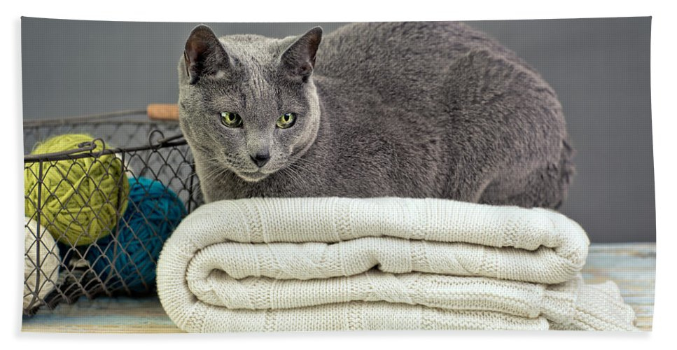 Purebred Beach Sheet featuring the photograph Russian Blue by Nailia Schwarz