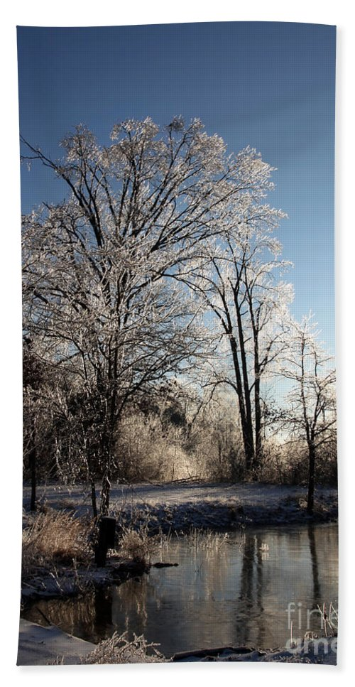 Trees Beach Towel featuring the photograph Trees In Ice Series by Amanda Barcon