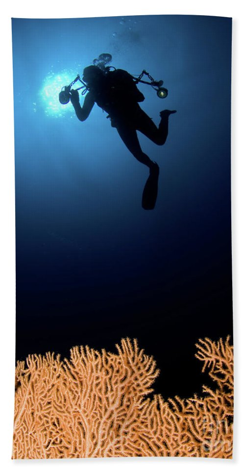 Underwater Beach Towel featuring the photograph Underwater Photography by Hagai Nativ