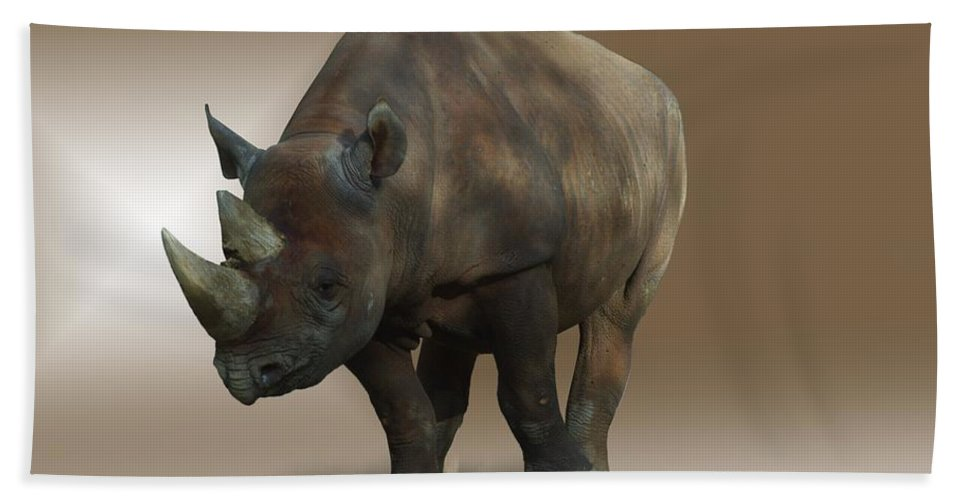 Rhinoceros Beach Towel featuring the photograph Rhino by FL collection