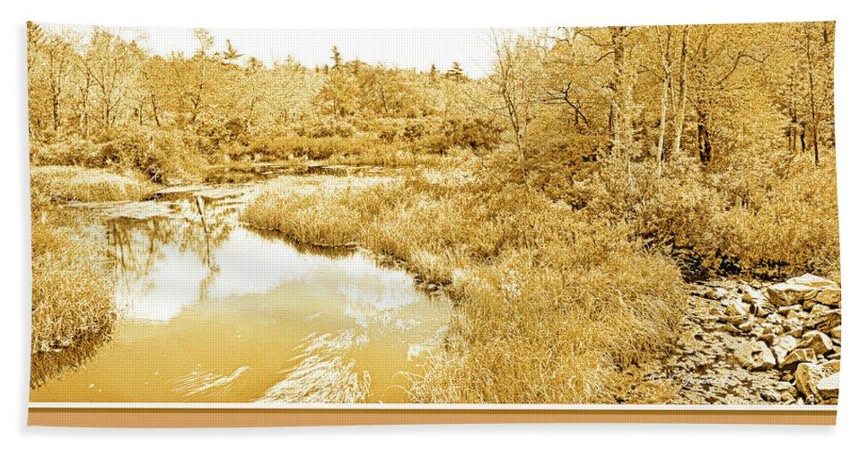 Color Beach Towel featuring the photograph Stream In Autumn, Pocono Mountains, Pennsylvania by A Gurmankin