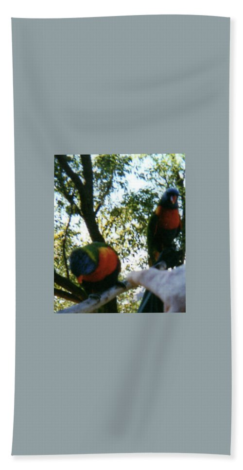 Beach Towel featuring the photograph Australian Native Animals by Peter Halmos