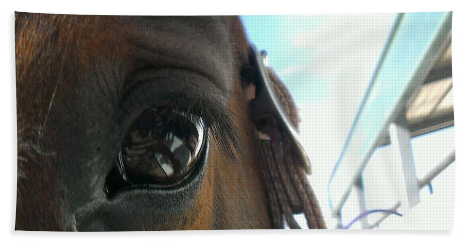 Horses Beach Towel featuring the photograph A Bay View by LKB Art and Photography